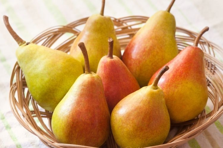 Les bienfaits méconnus de la poire pour la santé